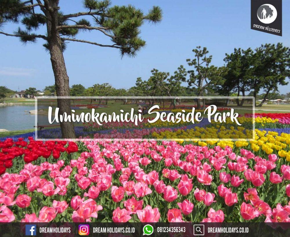 Uminokamichi Seaside Park
