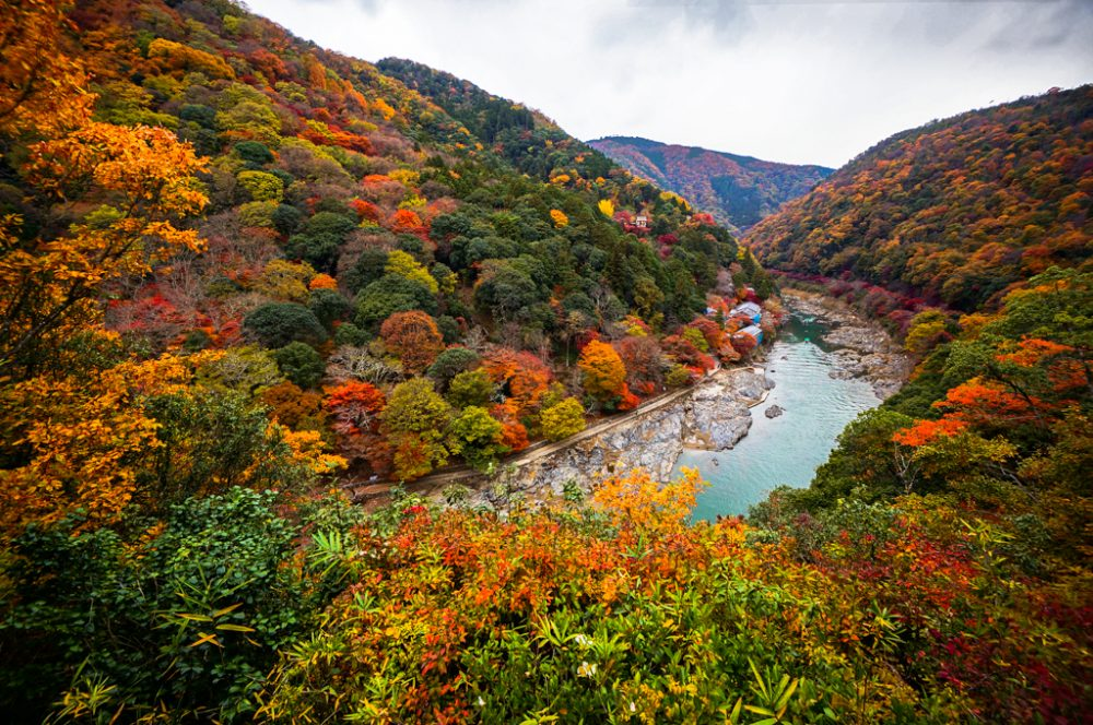 Arashiyama Autumn