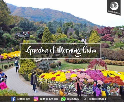 garden of morning calm
